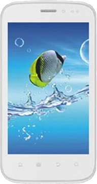 Intex Aqua Flash